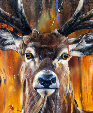 Stag - Original Lyndsey Selley Framed