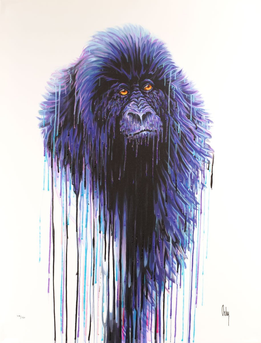 Virunga - Edition Robert Oxley Box Canvas
