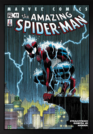 The Amazing Spider-Man #43 - SOLD Stan Lee