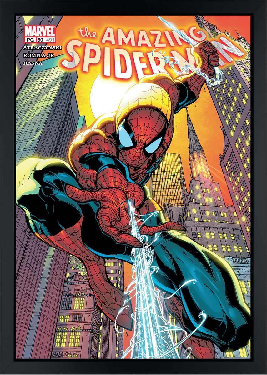The Amazing Spider-Man #491 Stan Lee