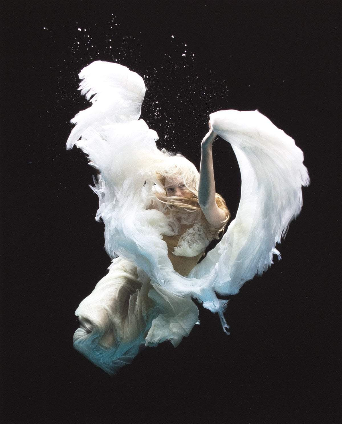 Angel 2 - Edition Zena Holloway