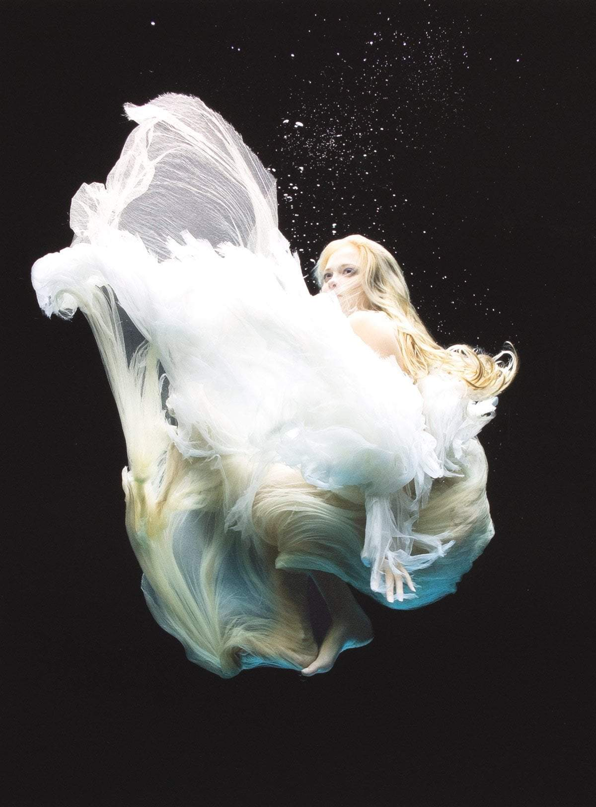 Angel 4 - Edition Zena Holloway