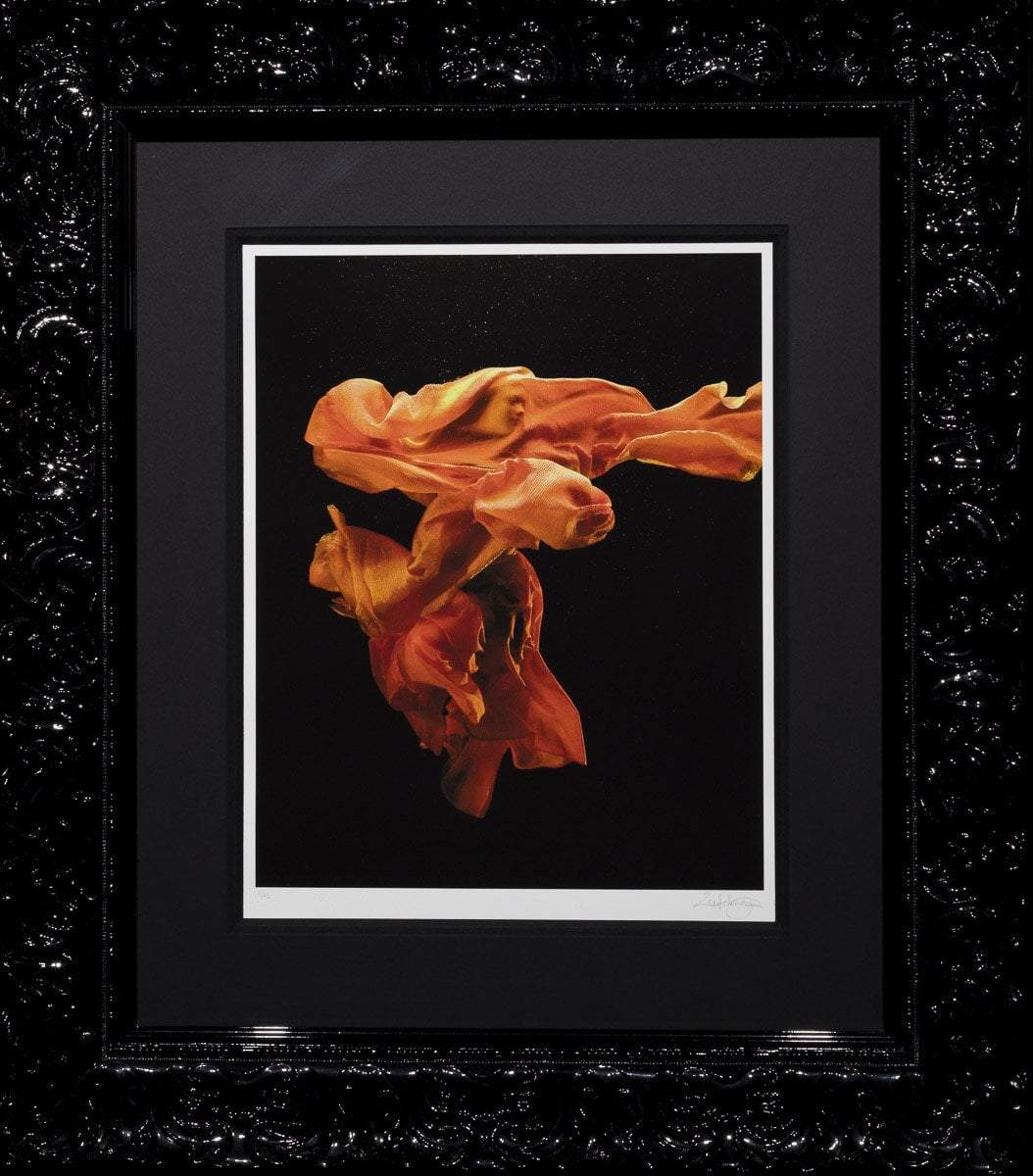 Fire 1 -Edition Zena Holloway Standard Edition Framed