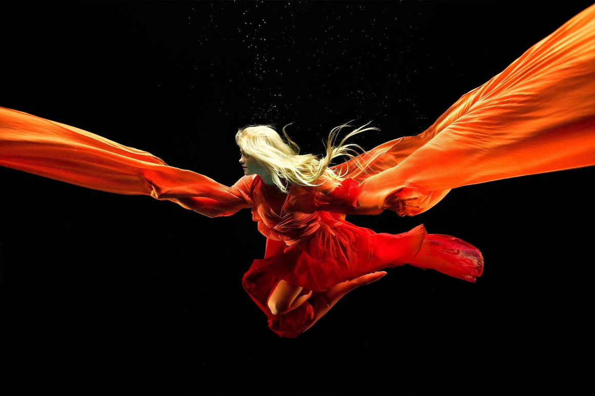 Fire 6 Zena Holloway
