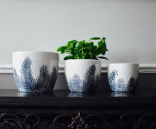 Load image into Gallery viewer, Blue & White Ceramic Feathery Fern Plant Pots