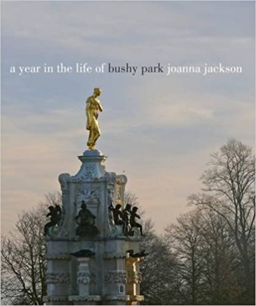 A Year in the Life of Bushy Park Book
