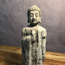 Load image into Gallery viewer, Mystic Garden S Standing Buddha
