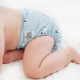 special delivery best pocket diapers for newborns