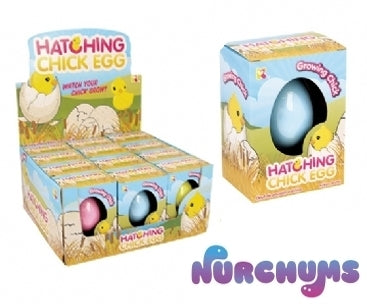 NURCHUMS™ Chick Hatching Egg