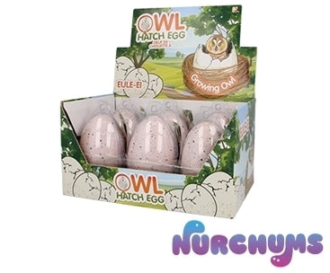 NURCHUMS™ Large Owl Hatching Egg