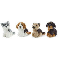 LIVING NATURE Miniature Dogs Assorted