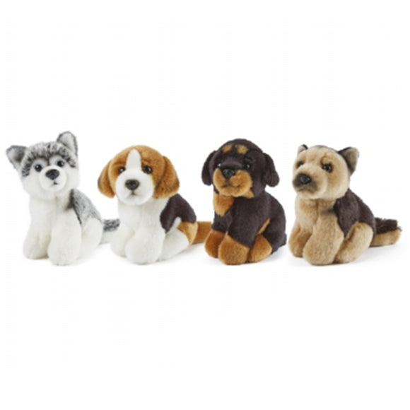 LIVING NATURE Puppy Small Assorted