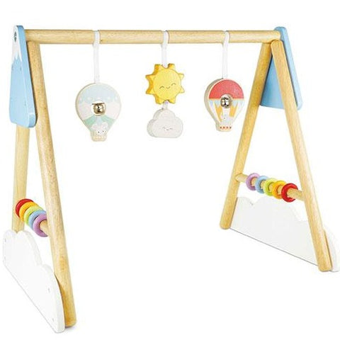 PL111 Developmental Toys