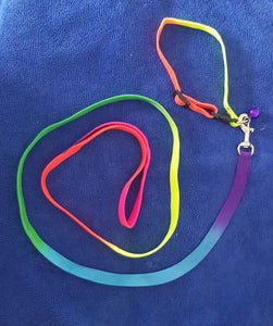Rainbow puppy collar and lead set - Puppy Collars & Things