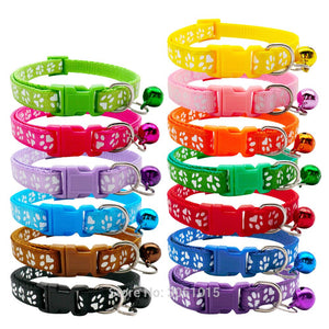 Nylon Collars Paw print - Puppy Collars & Things
