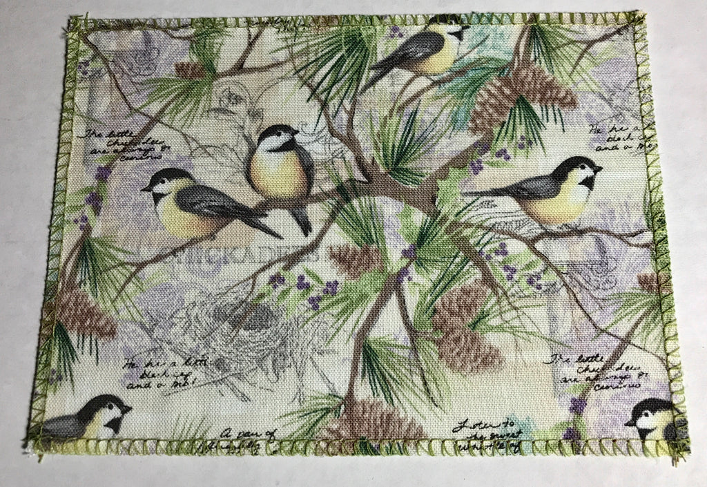 Sweet Chickadee Birds