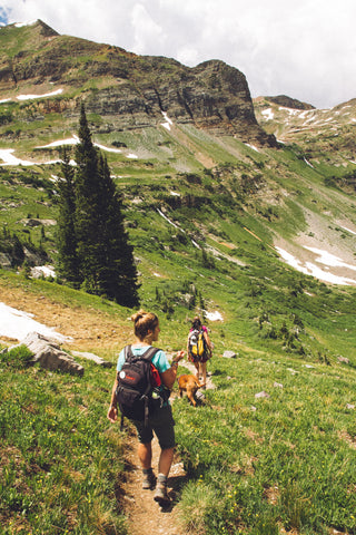 Two people hiking with backpacks on through the green grassy mountains on a sunny day after applying all-natural bug repellent