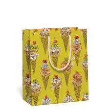 Flower Cones Gift Bag