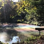 Rainbow on Pond