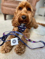 OMG - Summer In The City: Navy Blue OMG & Heart Graffiti Print Reversible Dog Lead