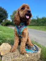 "Woofingdales Reversible ""Comfort"" Dog Harness - ""Summer In The Jungle"" Tropical Print"
