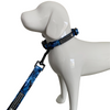 "Woofingdales Adjustable Comfort Dog Collar ""Can't See Me Blue"""