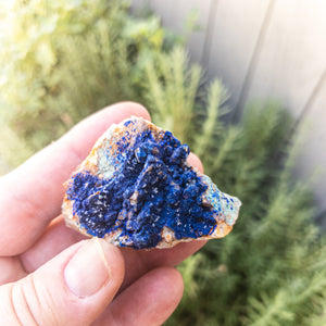 NEW! Azurite Rough Stones