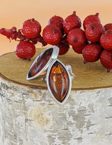 AUTUMN LEAVES | Amber | Silver