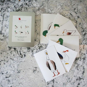 Duck Set of 6 cards in a tin