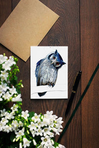 Northern White Faced Owl Cards - On White