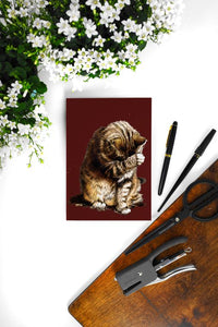 Small Fry The Cat A5 Notebooks