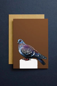 The Pigeon Art Cards