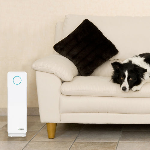 GermGuardian Pet Pure AC4300 Air Purifier in a large and inviting pet-friendly living room.