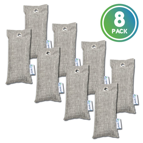 PureGuardian CB075 Bamboo Charcoal Air Purifying Bags, 2-pack, 75g ea