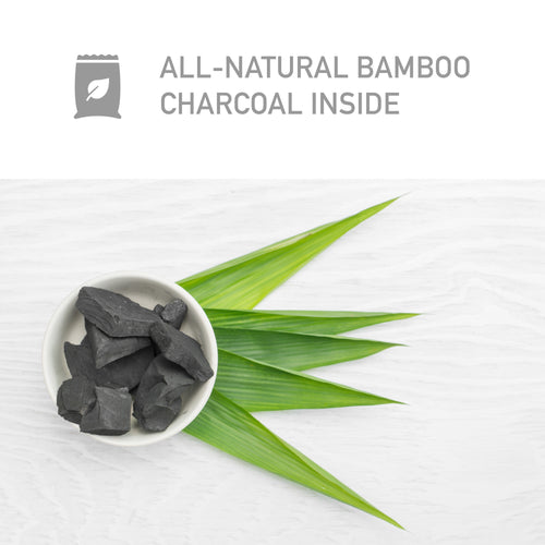PureGuardian CB500 Bamboo Charcoal 500g Air Purifying Bag