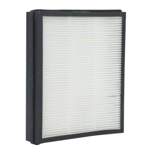 PureGuardian® FLT4220 Allergen GENUINE Replacement Filter D