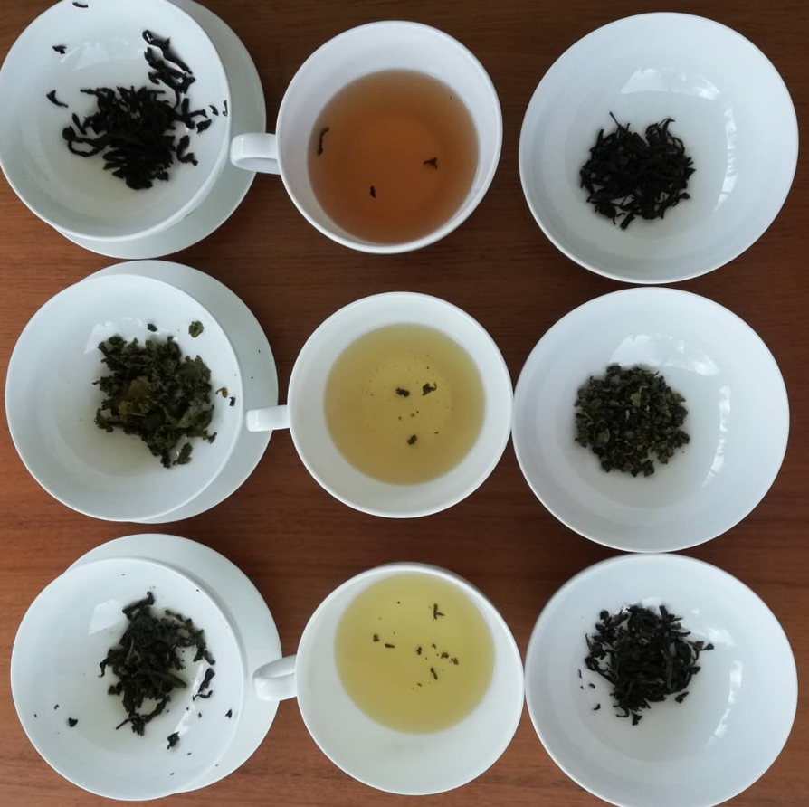 Oolong tea and food pairing