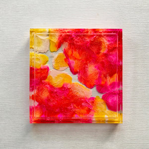 Square Trinket Tray: Pink/Yellow Petri