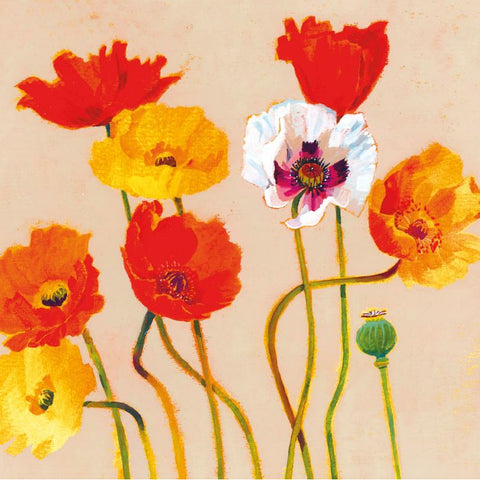 'BRIGHT POPPIES' Card Cards ABF The Soldiers' Charity Shop