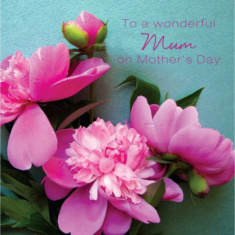 'TO A WONDERFUL MUM' Mother's Day Card Cards ABF The Soldiers' Charity Shop