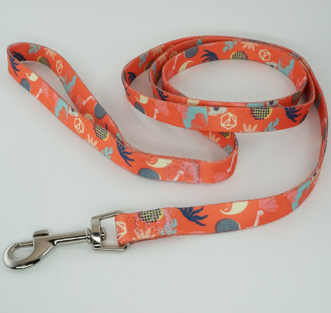 Small Collar and Leash