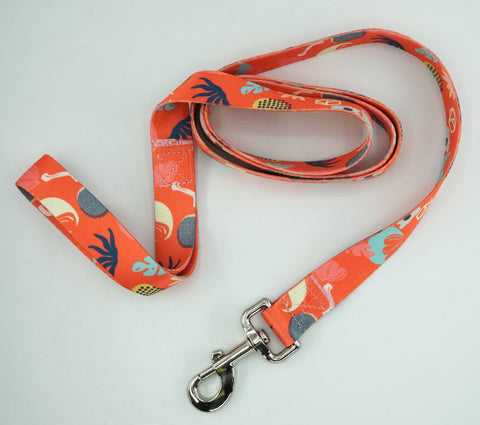 Large Collar and Leash