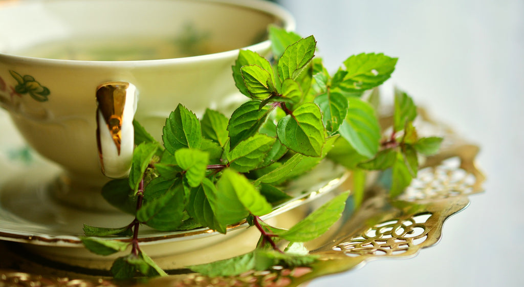 9 Peppermint Tea Benefits +Healthy Skin, Hair, and More