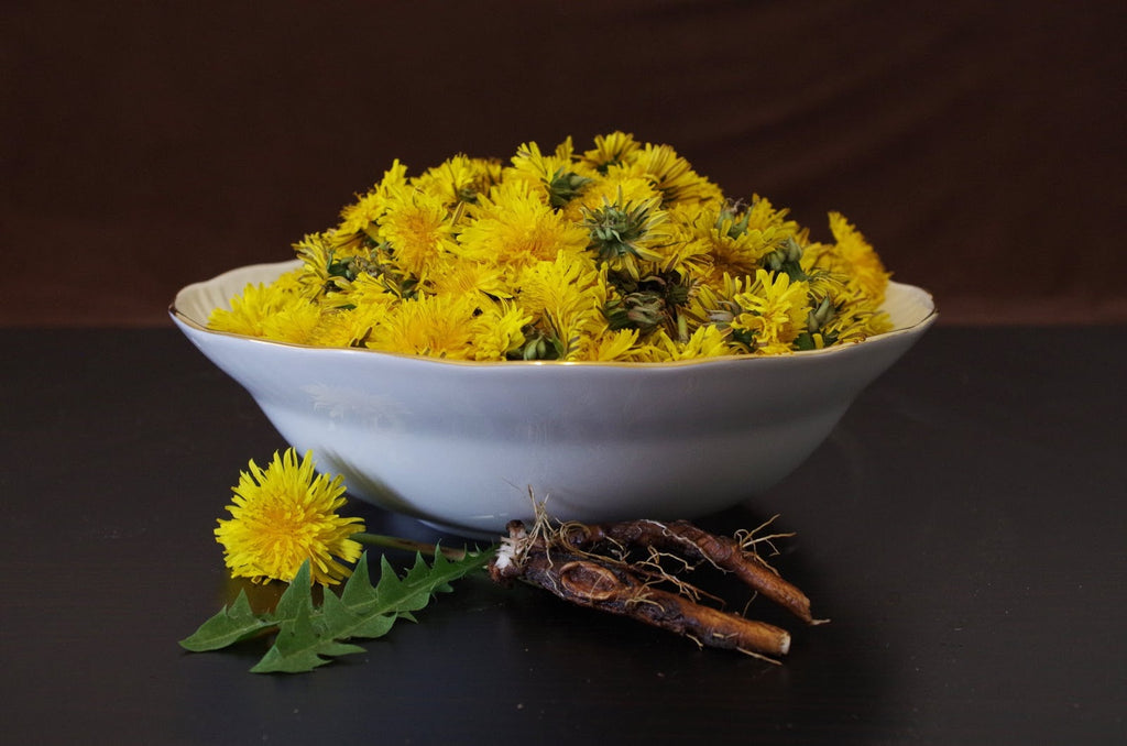 How to Make Roasted and Fresh Dandelion Tea From Your Garden