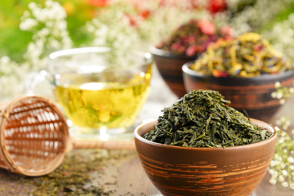 Shincha: Your Guide to Japanese Sencha Green Tea