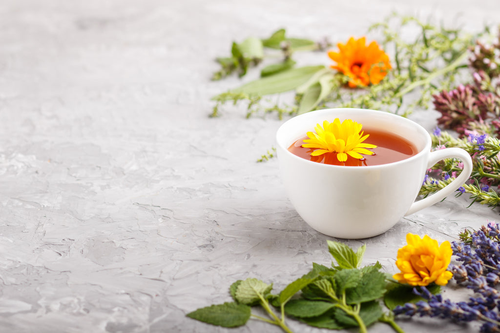 Hyssop Tea: A Deliciously Minty Tea With Licorice Notes