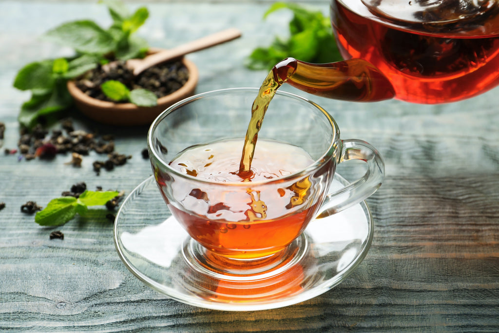 The Tea Plant: All About the Camellia Sinensis Plant