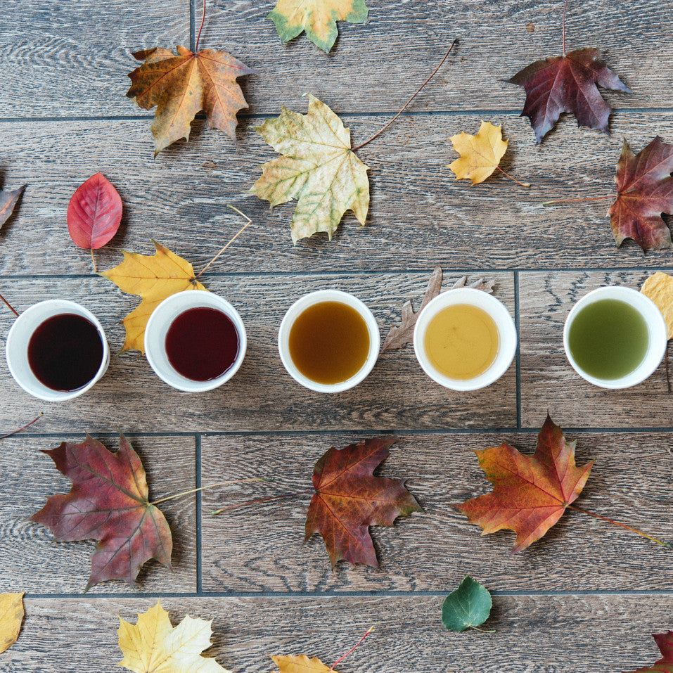 cups of loose leaf tea of varying color laid out in a row