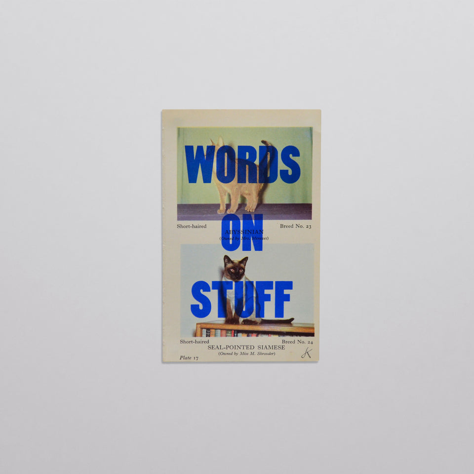 Words on stuff - Cats 03 (blue)