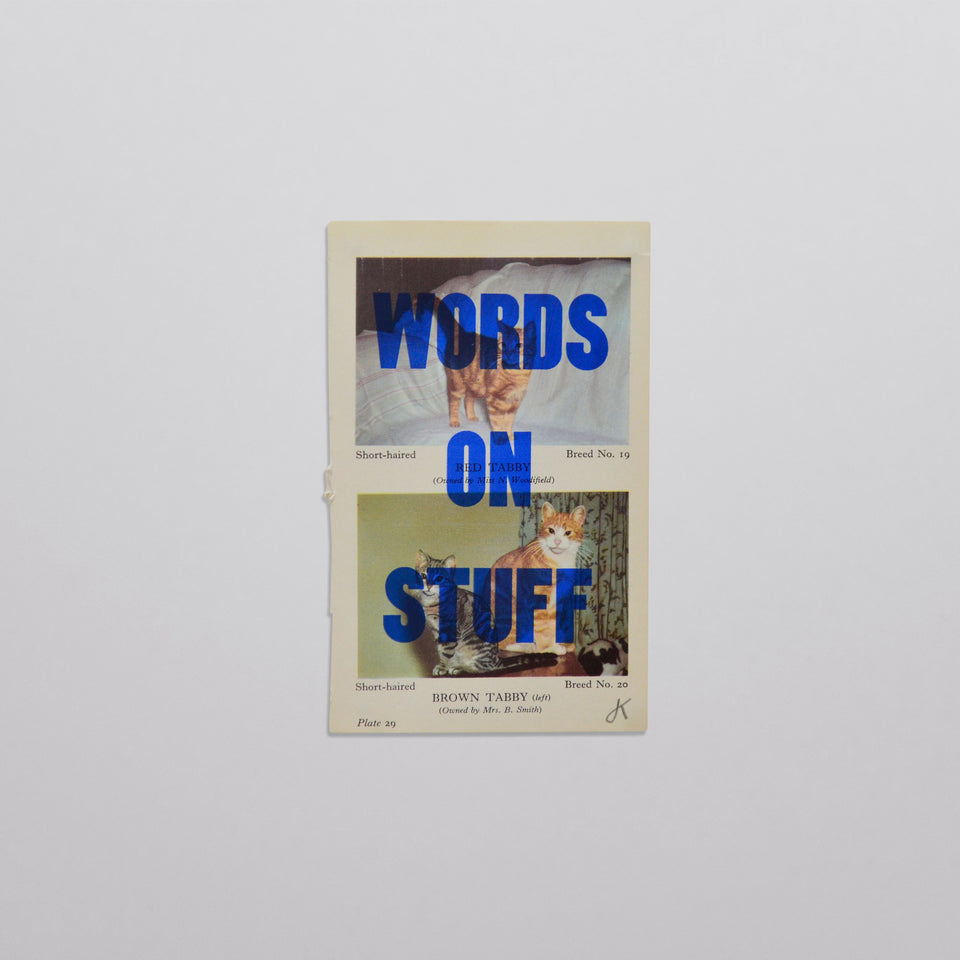Words on stuff - Cats 01 (blue)